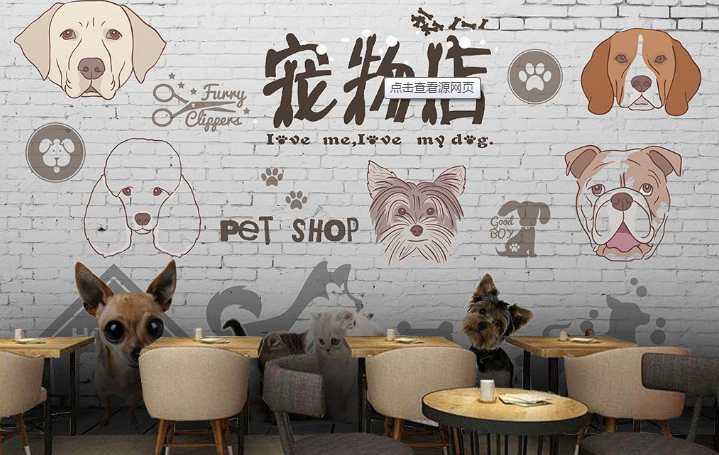宠物店加盟哪个品牌好 宠物店加盟十大品牌排名