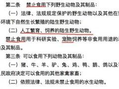 深圳将成为大陆首个立法禁食宠物猫狗城市:5月1日正式实施!