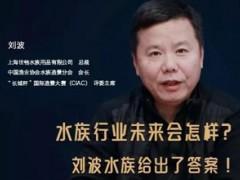 中国水族界先行者刘波畅谈水族行业的变迁与发展