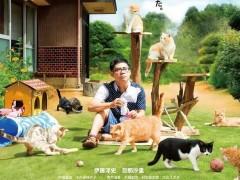 2017年剧情《猫咪后院之家》