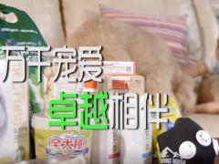 大梦映画-宠物广告