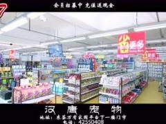 汉唐宠物宣传片