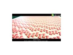 产品宣传片——路斯宠物饼干