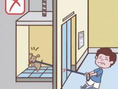 携宠物乘坐电梯的正确方式