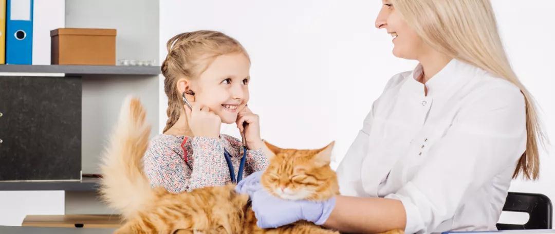 年复合增长率达8.3%,多家IVD企业发力宠物诊断市场